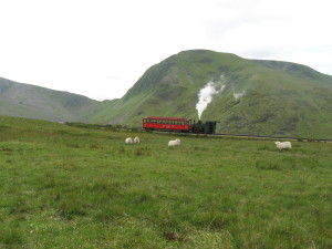 Snowden Mountain Railway seen on Slate Rally by Alan C